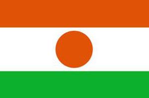 niger-flag